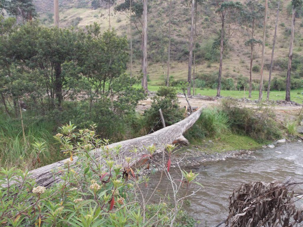 Moim zdaniem to nie jest prawdziwy most...